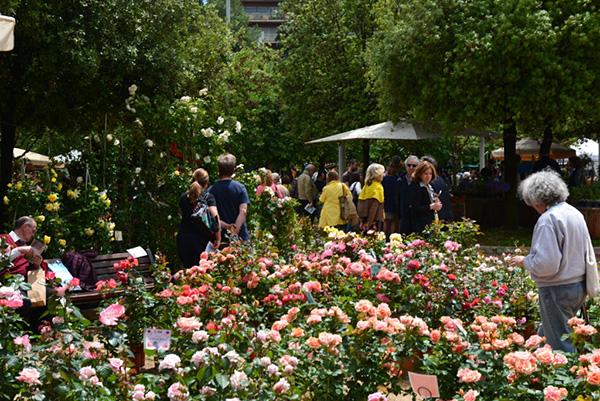 A Roma in mostrala qualità della produzione botanica italiana: clematis, rose, ninfee, piante da frutto, rampicanti, agrumi, aromatiche, erbacee e orticole