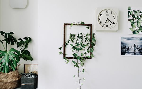 """Una pianta incorniciata. Ispirazione <a href=""""http://www.ikea.com/"""">Ikea</a>. Interior stylist: Ashlyn Gibson. Foto: Michael Sinclair"""