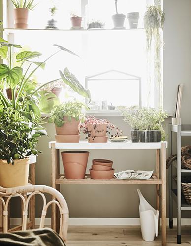 """Giardino verticale in casa. Ispirazione <a href=""""http://www.ikea.com"""">Ikea</a>"""