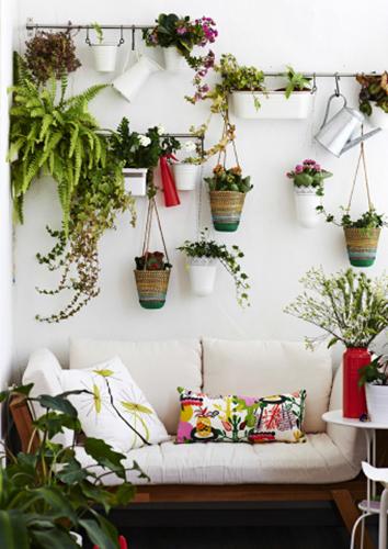 Esempio di giardino verticale realizzato su una parete inutilizzata