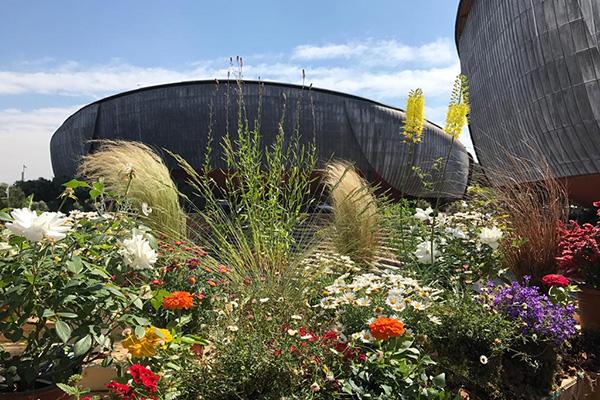 L'Auditorium Parco della Musica di Roma ospita dal 18 al 20 maggio il Festival del Verde e del Paesaggio Diventato un punto di riferimento per appassionati e professionisti, quest'anno propone una serie di installazioni che narrano i diversi tipi di giardino