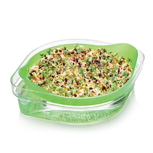 """Le erbe aromatiche danno sapore in modo fresco e sano a tutti i piatti. Il <em>Vaso per germinazione </em>di <a href=""""http://www.tescomaonline.com/"""">Tescoma</a> contiene un misto di erba medica, senape gialla e fieno greco da coltivare comodamente a casa (11,90 euro)"""