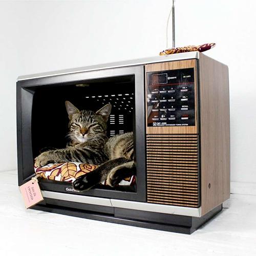 Se invece siete amanti del vintage, potete riciclare un vecchio monitor a tubo catodico o una televisione. Se pensate di non essere in grado di smontare da soli il monitor, rivolgetevi a un elettricista