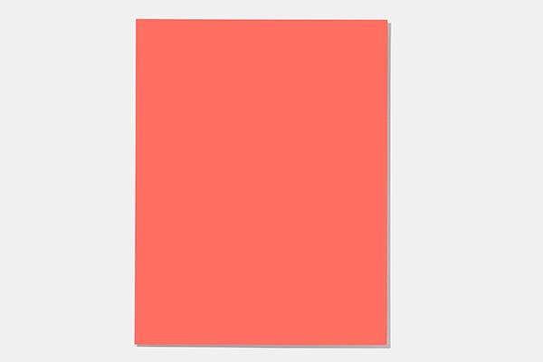 MaxMeyer, marchio specializzato nel settore delle pitture e decorativi per interni, produce la Collection Inspired by Pantone. L'azienda ha annunciato che realizzerà anche una serie di pitture e smalti nella tonalità 16-1546 Living Coral