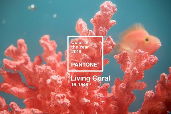 Il Living Coral 16-1546, il colore del 2019 secondo Pantone
