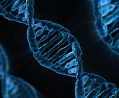 L'impatto dei test genomici sulla scelte cliniche di medici e pazienti