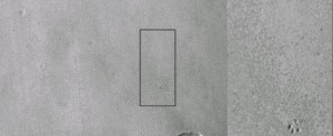 190604932-f74c589c-5811-42d8-8df1-affdf3858ccf