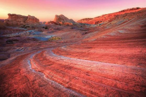 Arizona (Stati Uniti)