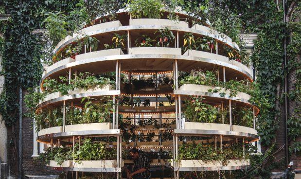 Con Questo Giardino Fai Da Te Di Ikea Puoi Produrre Fiori Frutta E