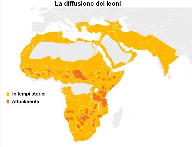 Diffusione leoni