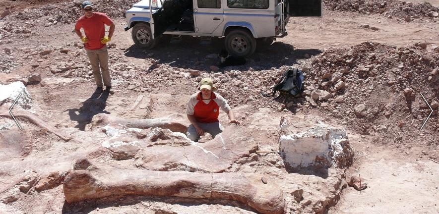 Scoperto in Patagonia il più grande dinosauro mai esistito: lungo 39,5 metri, pesava 69 tonnellate