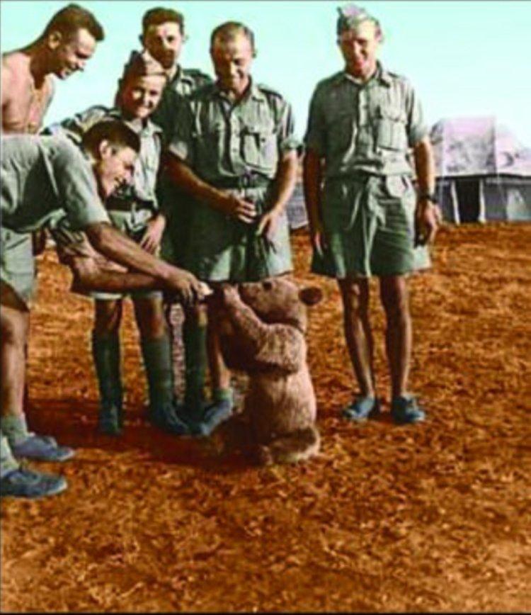 Un eroe di 2 quintali. Storia del caporale Wojtek, che combatté i nazisti in Italia nel 1945. Ed era un orso