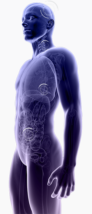 Diagnosi più veloci ed errori ridotti della metà se l'intelligenza artificiale legge le radiografie