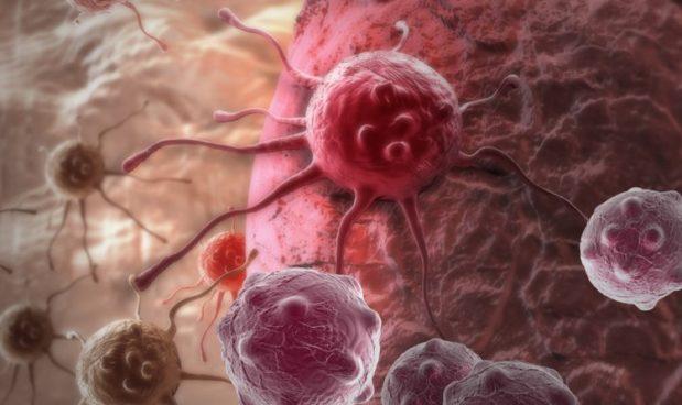 Gli scienziati potrebbero aver trovato un modo per curare il cancro senza chemioterapia, replicando il sistema di autodistruzione del nostro corpo