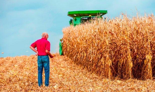Trump mette in ginocchio i piccoli agricoltori del Mid-West: sussidi statali solo alle grandi aziende e ai campi da golf
