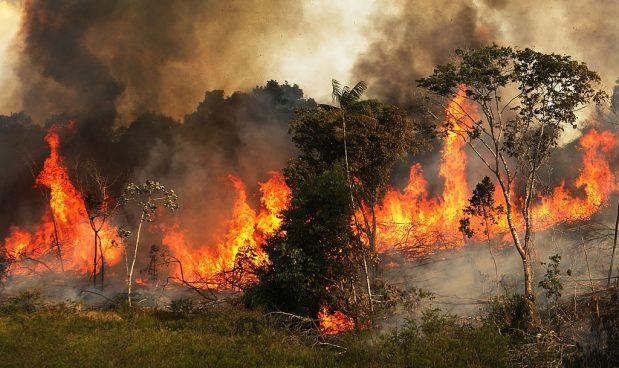 Il primo risultato del G7: un accordo per salvare l'Amazzonia
