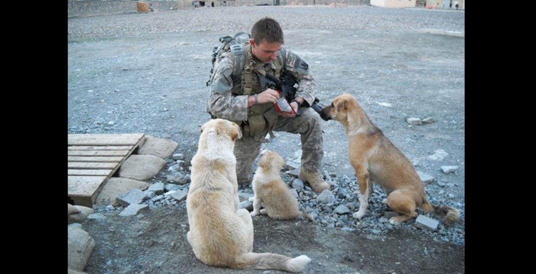15 storie di amicizia tra cuccioli e soldati nei campi da guerra