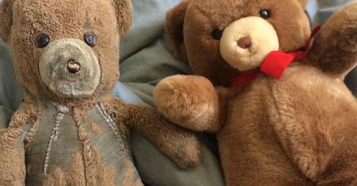 Uno è stato utilizzato, l'altro tenuto in una scatola per 30 anni:due orsacchiotti di peluche mostrano gli effetti dell'amore