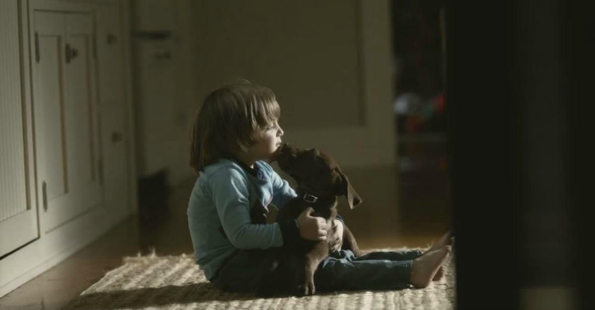 Il bambino e il suo cucciolo: l'intera vita insieme in un minuto