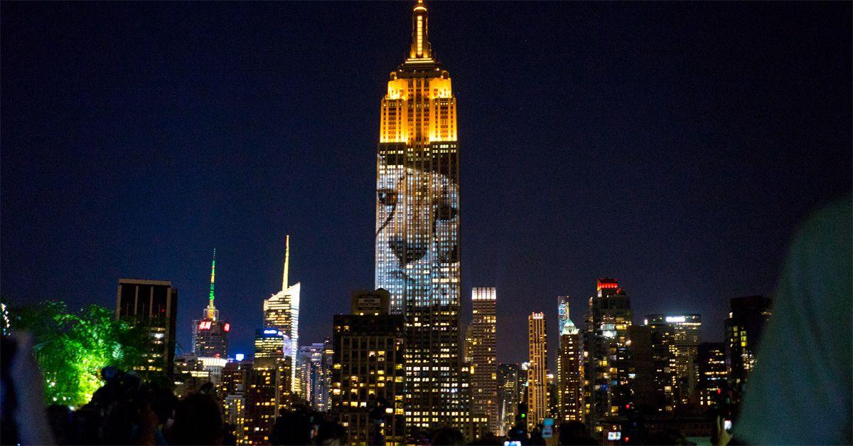 L'Empire State Building illumina Manhattan con gli animali a rischio estinzione. Tra loro anche il leone Cecil