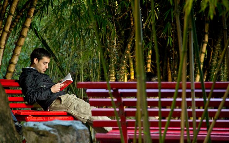 Il fascino del libro: 10 motivi per uscire con un (vero) amante della lettura