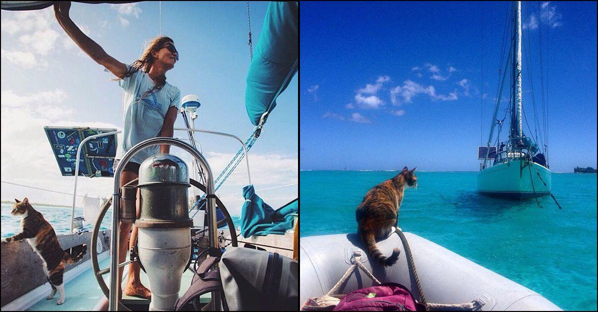 Si licenzia e gira il mondo in barca a vela con il suo gatto: ecco la storia della 34enne Liz Clark