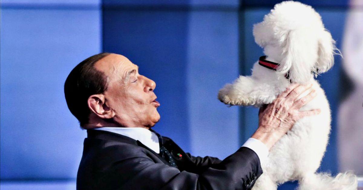 Berlusconi da Vespa con il barboncino, ma il cane prova a fuggire