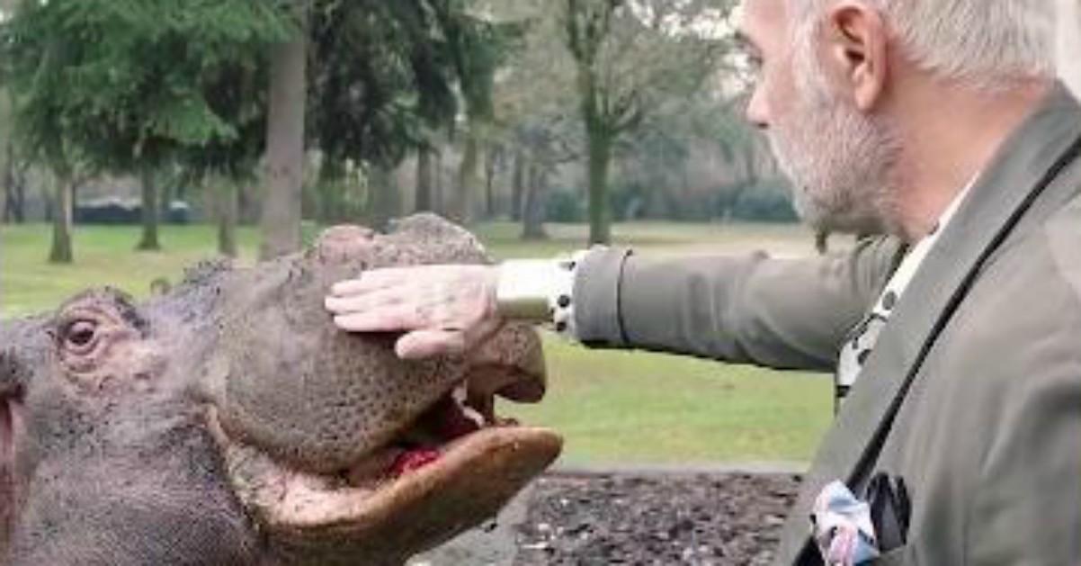 Gianluca Vacchi ha un ippopotamo in giardino: arrivano i carabinieri forestali