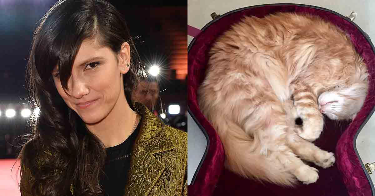 "Elisa ad Animal House: ""Vi racconto la vita con i miei animali Blacky e Ginger"""