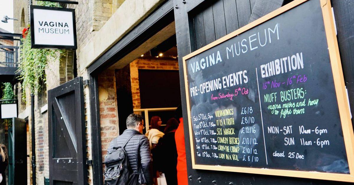 Apre a Londra il Vagina Museum: ecco cosa succede all'interno