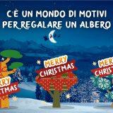 C'è un mondo di motivi per regalare un albero a Natale