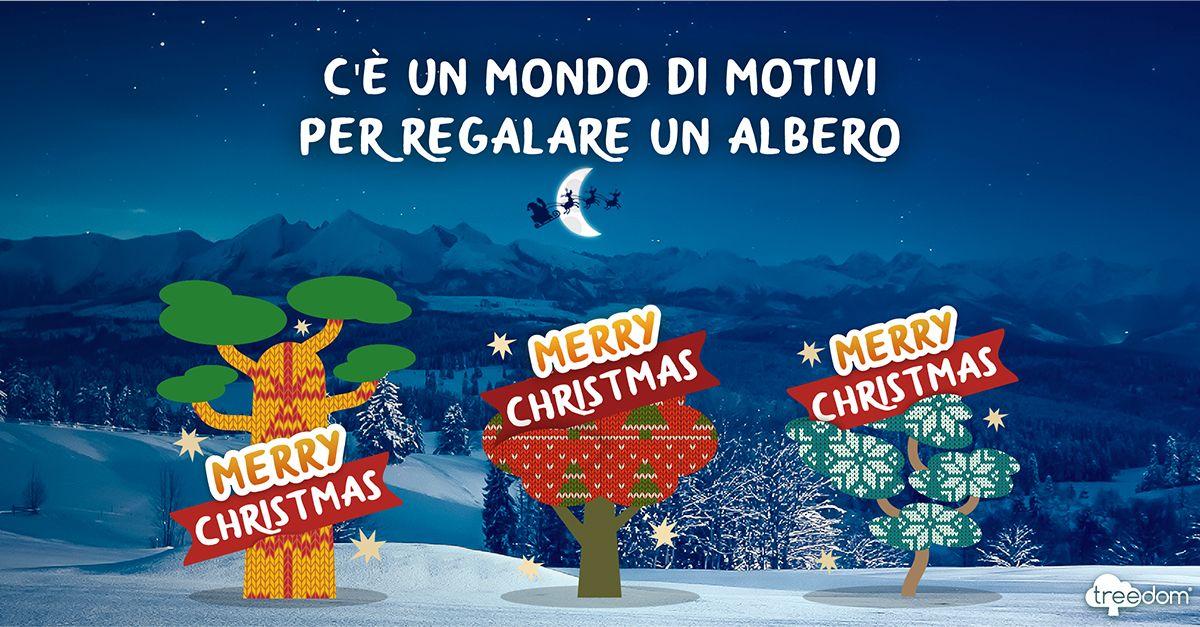 Treedom, c'è un mondo di motivi per regalare un albero a Natale