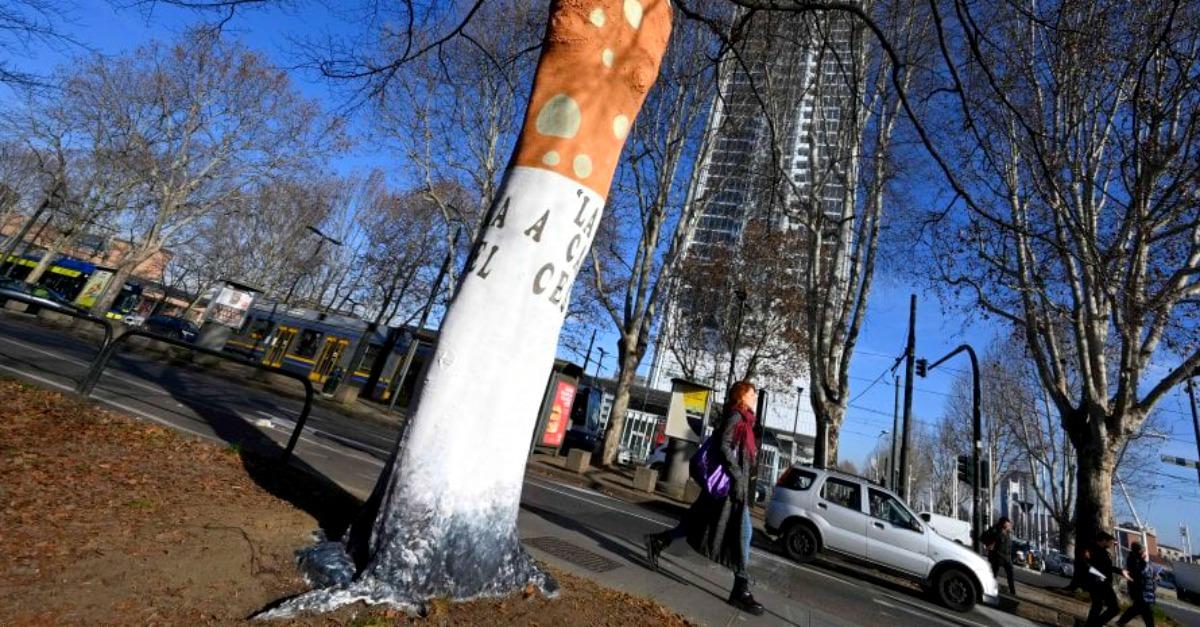 Enormi sigarette spente a terra: a Torino alberi dipinti contro le cattive abitudini
