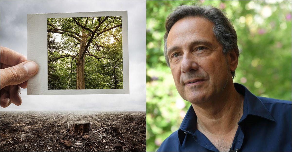 """Deforestazione e pandemie. Mario Tozzi: """"La foresta è il nostro migliore antivirus"""""""