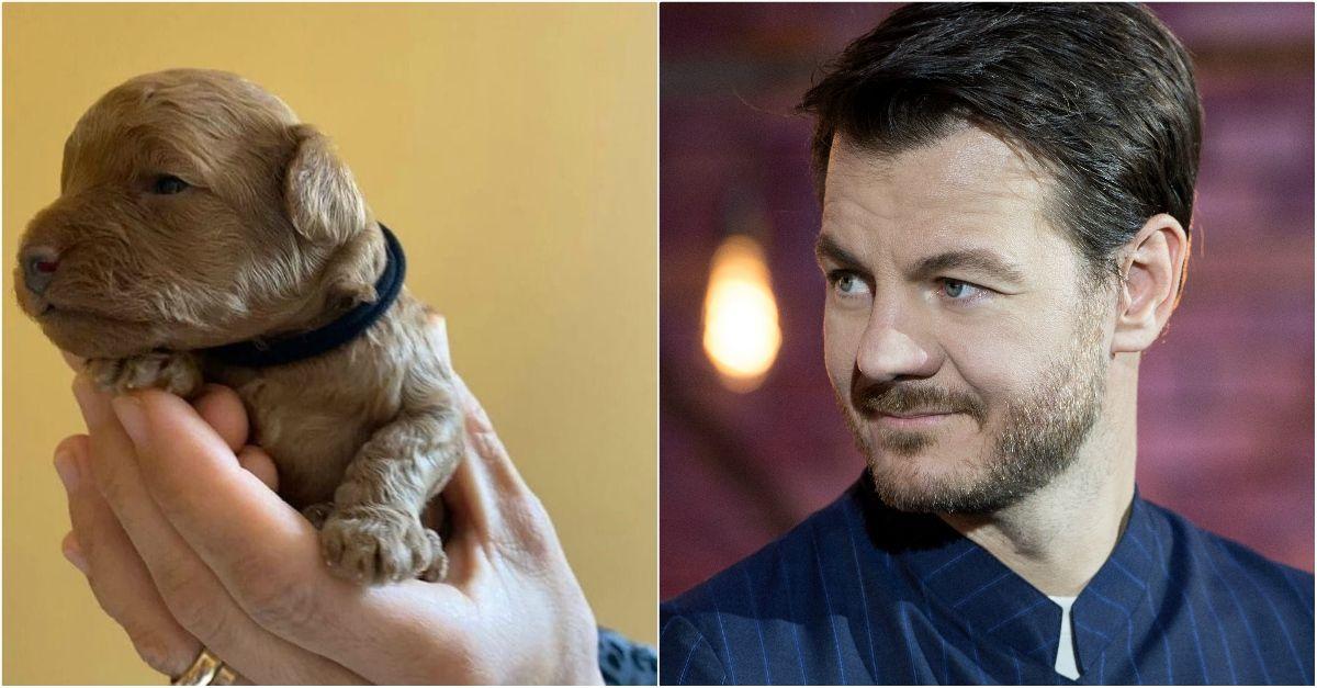 """Cattelan dà al suo cane il nome di un noto giornalista italiano: """"È una persona buona"""""""