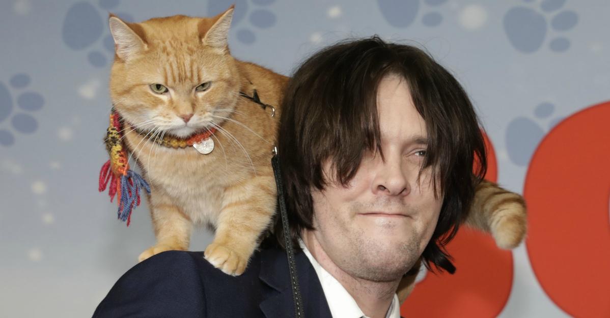 """Morto Bob, il gatto che ha reso il padrone senzatetto una star: """"Mi hai salvato la vita"""""""