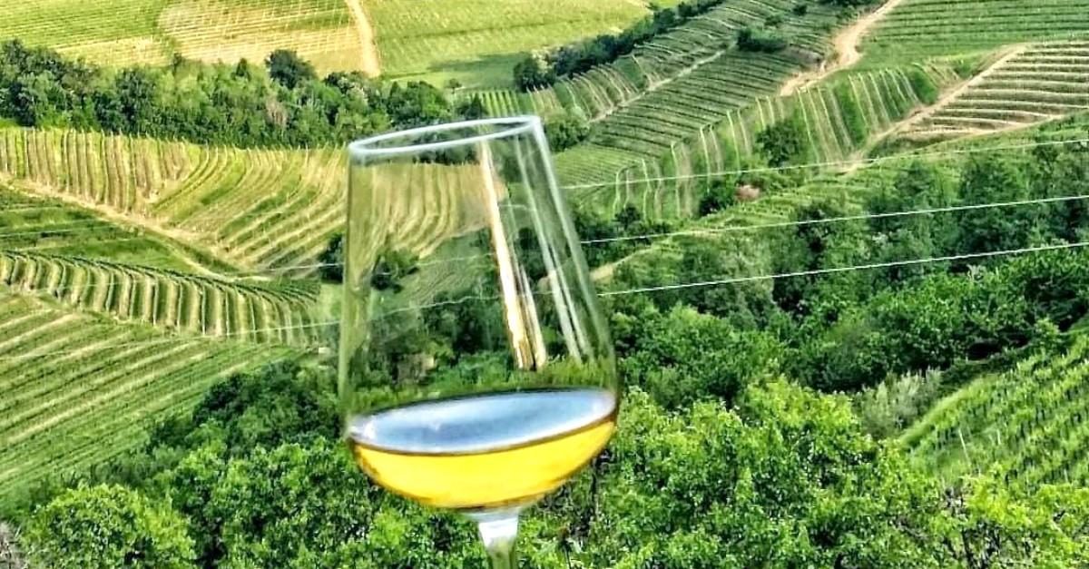 Una vacanza sulle strade del vino in Friuli Venezia Giulia è quello che stavi cercando