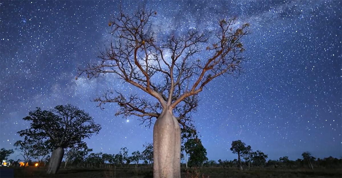Il cielo dell'Australia è illuminato: la Via Lattea in un timelapse spettacolare