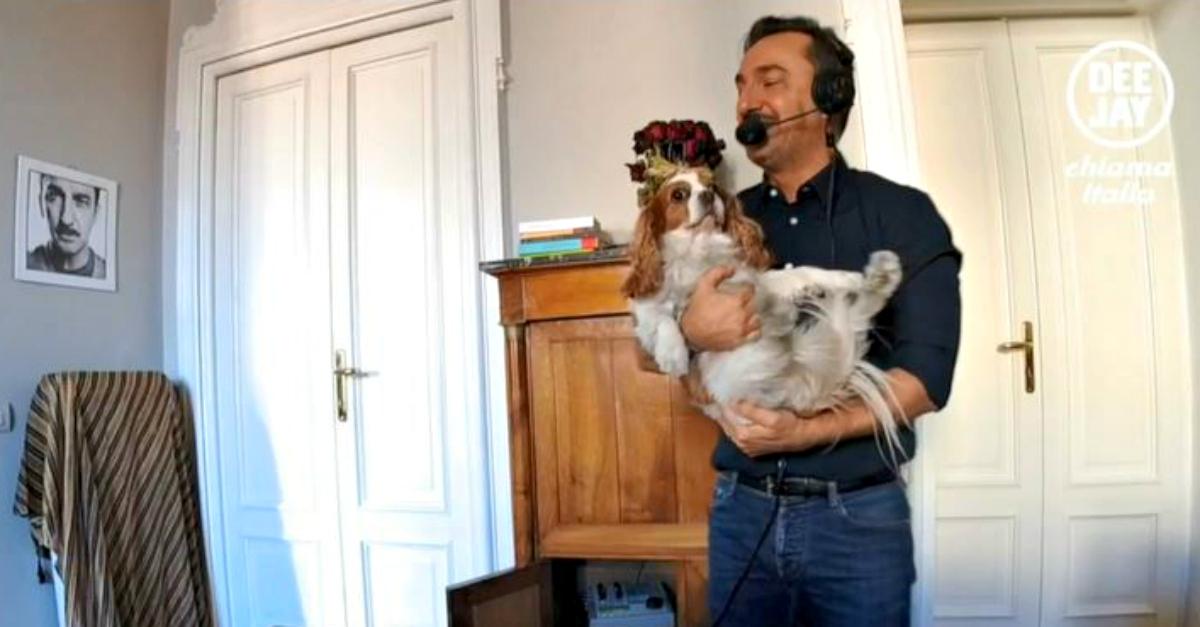 Prove di smartworking a Deejay Chiama Italia: la cagnolina di Nicola irrompe in diretta