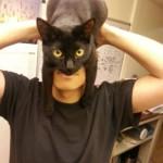 Ho un gatto per cappello