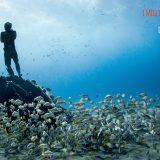 Arriva in Italia l'Ocean Film Festival: emozioni e avventure sopra e sotto le acque