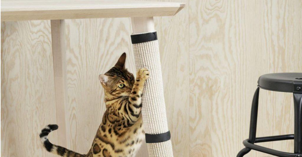 Ikea lancia la linea per animali domestici radio deejay for Tiragraffi gatti ikea
