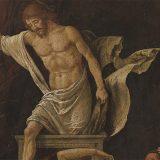 """Bergamo, scoperto un Mantegna all'Accademia Carrara. Il direttore: """"Era in cantina da 150 anni"""""""