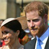 Prima uscita ufficiale per Harry e Meghan da sposati, un'ape disturba il discorso