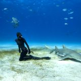 L'Ocean Film Festival arriva in Italia per la sua 2° edizione: pronti per immergervi al cinema?
