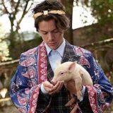 Harry Styles, maialini e caprette per la nuova campagna di Gucci
