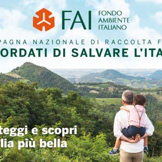 Ricordati di salvare l'Italia: manda un sms al 45592