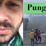 Kiwi di Calcutta, cosa significa 'Pungicare'? La spiegazione di Treccani