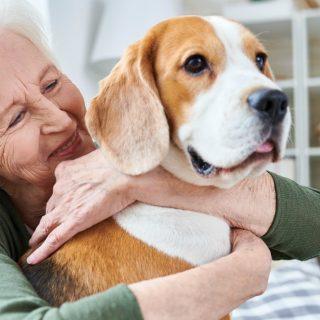 I cani fanno bene alla salute, padroni più longevi