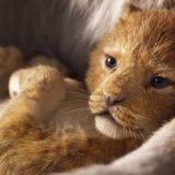 """Torna """"Il Re Leone"""", il trailer del remake vi farà innamorare di nuovo del classico Disney"""